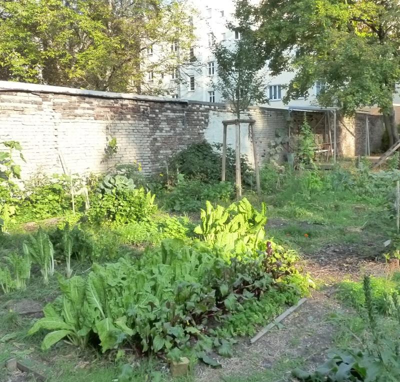 - lichte_weiten_biogarten