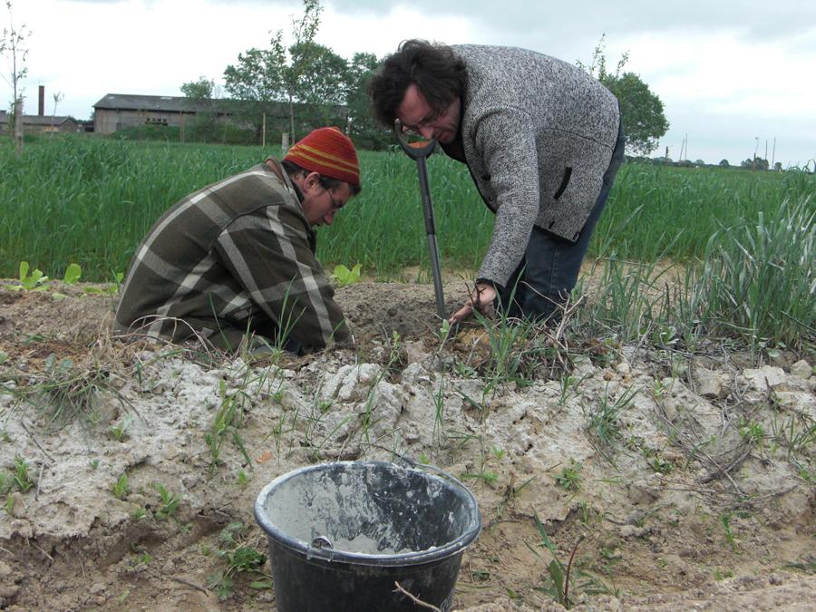 Zusammenarbeit auf dem Bauernhof Löwengarten